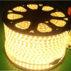 Super Warn White SMD5050 Flexible LED Strip Lighting 220V