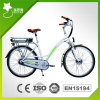 26inch Rear Rack Lithium Battery E Bike (RSEB-201)