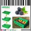 Пластичная складывая клеть фрукт и овощ клети