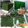 Barriera artificiale del giardino dell'EDERA del Boxwood del pannello della rete fissa di plastica del foglio