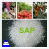 中国の極度の (SAP)Absorbent Polymer Soil Conditioner Manufacturer
