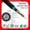 Double câble optique blindé extérieur de fibre du câble fibre optique GYTA53