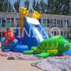 Dea World Inflatable Water Slide da vendere, Pool Slide