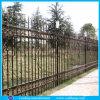 Cerca ornamental antigua del hierro (DH-fence-29)