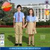 新式の学生服のワイシャツおよびカーキ色のスカート
