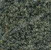 De absolute Zwarte Tegel van het Graniet Shanxi