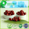 Lycopène naturel Softgel d'extrait de tomates de réducteurs de cholestérol