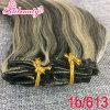 Clip brasileño de Remy de la Virgen humana verdadera del color el 100% de Ombre en la extensión del pelo