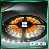 Tira impermeable del LED, tiras del LED, lámpara de la tira del LED (LC-WP5050-12V-30P-IP68)