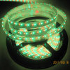 3528/5050 RGB LED Strip con IP65