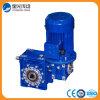Зубчатая передача машинного оборудования RV/привод Garebox глиста