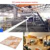 Доска листа PVC Sjsz80/156 имитационная мраморный делая машину