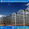 Lage Kosten en het economische Commerciële Groene Huis van het Glas Multispan voor Tomaat