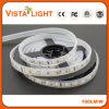 Luz de tira flexível mutável do diodo emissor de luz 24V para clubes de noite