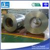 Galvanisierter Stahlring/Blatt (GI)
