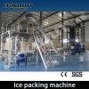Польностью автоматическая машина упаковки льда