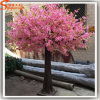 Nuovo Design Artificial Cherry Blossom Tree Made di Fiberglass