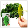 Овощ оборудует пластичный Kale PP и зеленеет стриппер 12*6cm