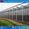 Haida AquaponicsのためのHydroponicシステム工場価格のガラス温室