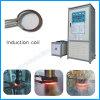 Fornace elettrica industriale per il riscaldamento che indurisce macchina