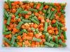 Vegetais misturados congelados IQF