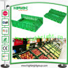 Plastic pieghevole Fruit Crate da vendere