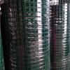 Покрынная PVC сваренная ячеистая сеть (XA-WM)