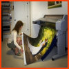Toile d'indicateur de textile d'impression de Digitals (SFC100)
