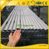 Constructeur en aluminium fournissant ovale en aluminium enduit/grand dos/rond/à plat tube de poudre