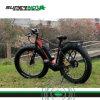 يطوي كهربائيّة درّاجة وسط درّاجة إطار العجلة سمين مع [350و] [إلكتريك موتور]
