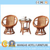 Outdoor Dining Teak Stainless Steel Rattan Furniture Set