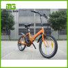 Город малой складчатости Китая дешевый E-Bike 20 дюймов складывая