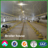 Erection rapide Steel Structure Broiler House avec Automatic Equipment