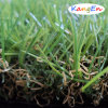 Synthetic/Artificial Grass for Backyard Decoration