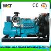 Conjunto de generador del gas natural del refrigerador de agua con el mejor precio