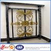 Powder decorativo Coated Modern Wrought Iron Fence (dhfence-18)