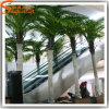 De Plastic Kunstmatige Palm van uitstekende kwaliteit van de Kokosnoot
