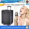 12-duim de Luide Spreker van het Karretje van het Systeem van de Karaoke met Draadloze Microfoon