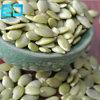 Стержени семян тыквы кожи Shine высокого качества от Китая