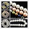 Los granos de la perla de la joyería, océano Shell aljofaran la joyería de la manera del collar
