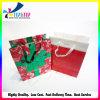 Bolsas de papel de lujo del embalaje del regalo de la Navidad