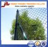 5개 발 체인 연결 담, 다이아몬드 철망사 Manufacture&Supplier 의 장식적인 정원 담