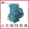 Ex-Proof Three Phase Electrical Motor (YB3 Series)