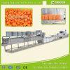 Linha automática de secagem de lustro de lavagem da casca do corte do Radish/cenoura