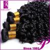 100%の贅沢のRemyの人間の毛髪のバージンのマレーシアのカーリーヘアー