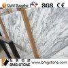 イタリアの灰色の静脈のCalacattaの白い大理石のタイル
