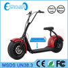 2016 2 elegantes Wheel Electric Motorcycle para Adult