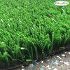 フィールド緑の人工的なプラント、テニスの草