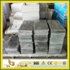 Outdoor Project를 위한 Sandwave Granite Thin Floor Tile