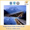 Ep315/3 Conveyor Frio-Resistent Belt para Cool Circunstância